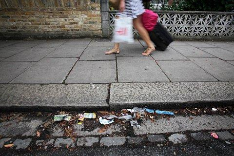 Fines for dog fouling and littering coming to Brentwood