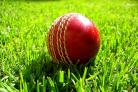 CRICKET: T Rippon round-up
